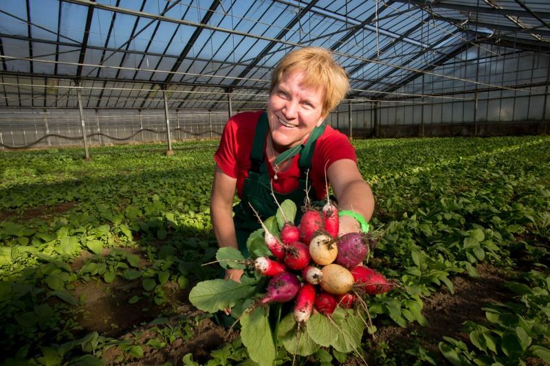 Heidi Jung hat über 154 Tomaten-Sorten und erklärt uns, wie man am besten Tomaten züchtet --> Aufgenommen am 24. April 2013, Im Teller 11, Frankfurt am Main, Oberrad, von Christian Christes >> Veröffentlichung nur gegen Honorar zzgl. wSt, Tel: 0163 - 510 26 21, Mail: foto@wellenwerk.de